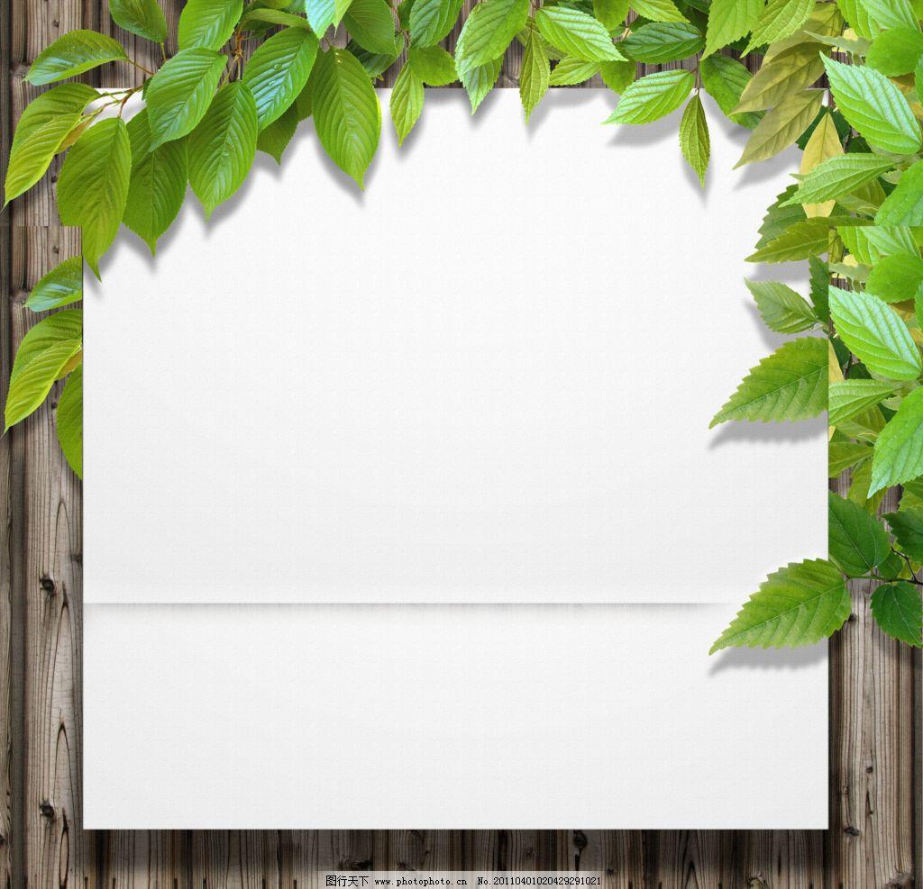 绿叶边框 绿叶卡片 绿叶