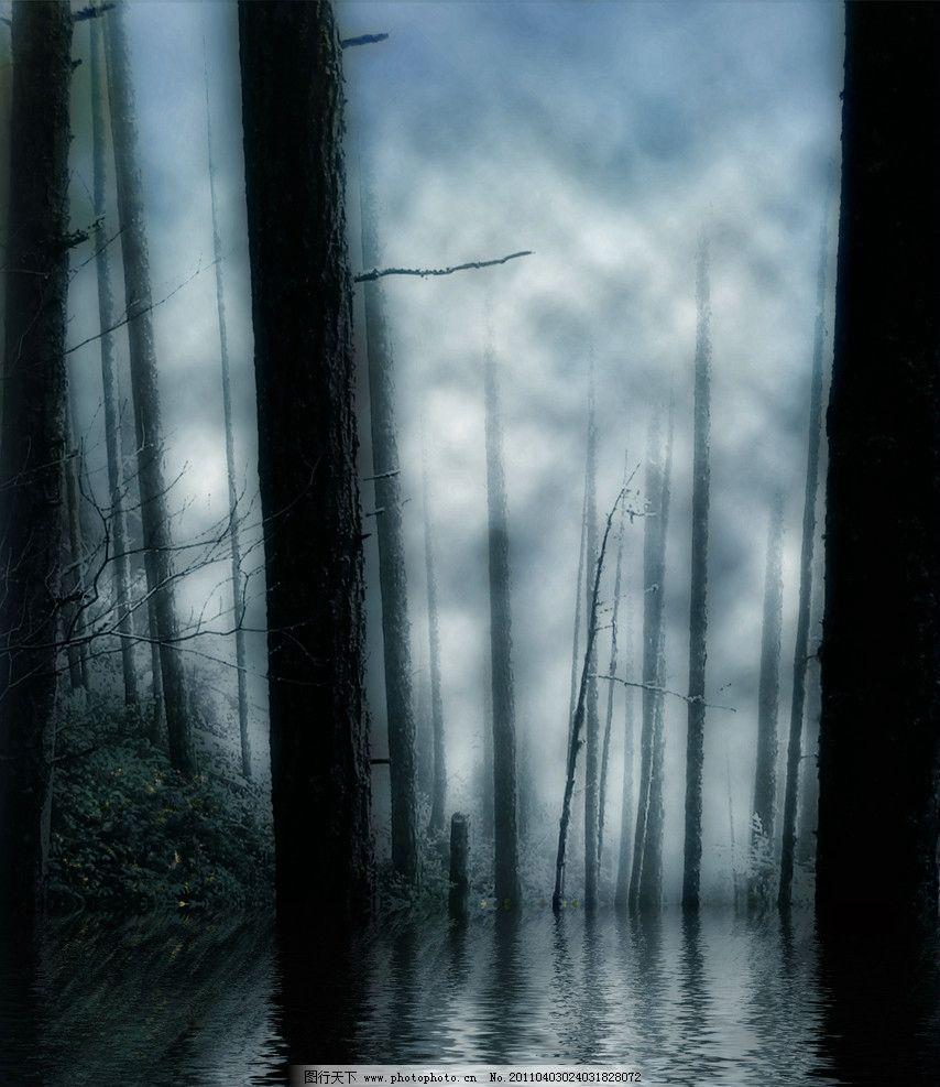 树木树叶 树木图片 水面 倒影 天空 草丛 树干 树枝