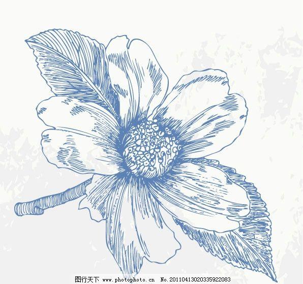 手绘花卉矢量素材 手绘 线描 素描 线条 花卉 花朵 花纹 叶子 花纹