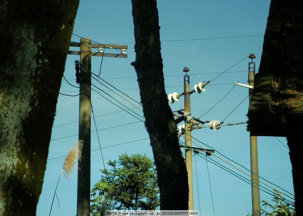 风景图 大树干 屋顶 电线杆 电路 蓝天 花草 生物世界 摄影 72dpi jpg