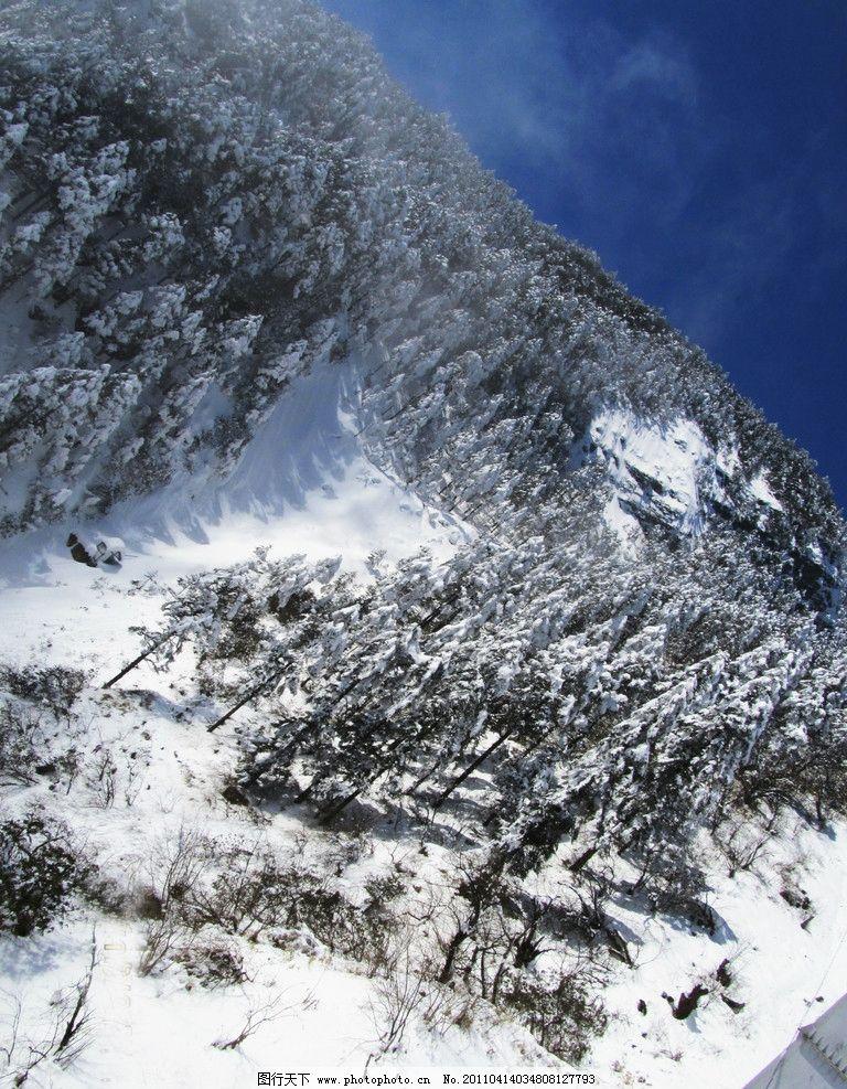 雪景 云 雾 雪 天空 蓝天 树林 树 风景 仙境 摄影 素材 风景摄影