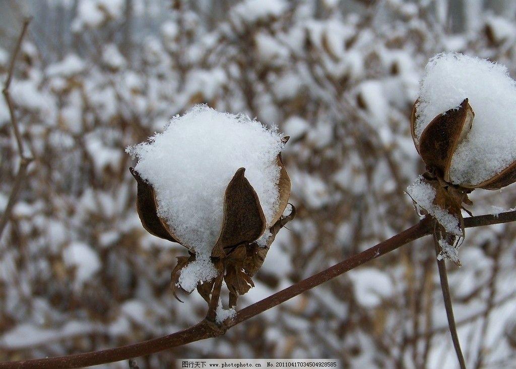 棉花手工制作粘贴雪景画