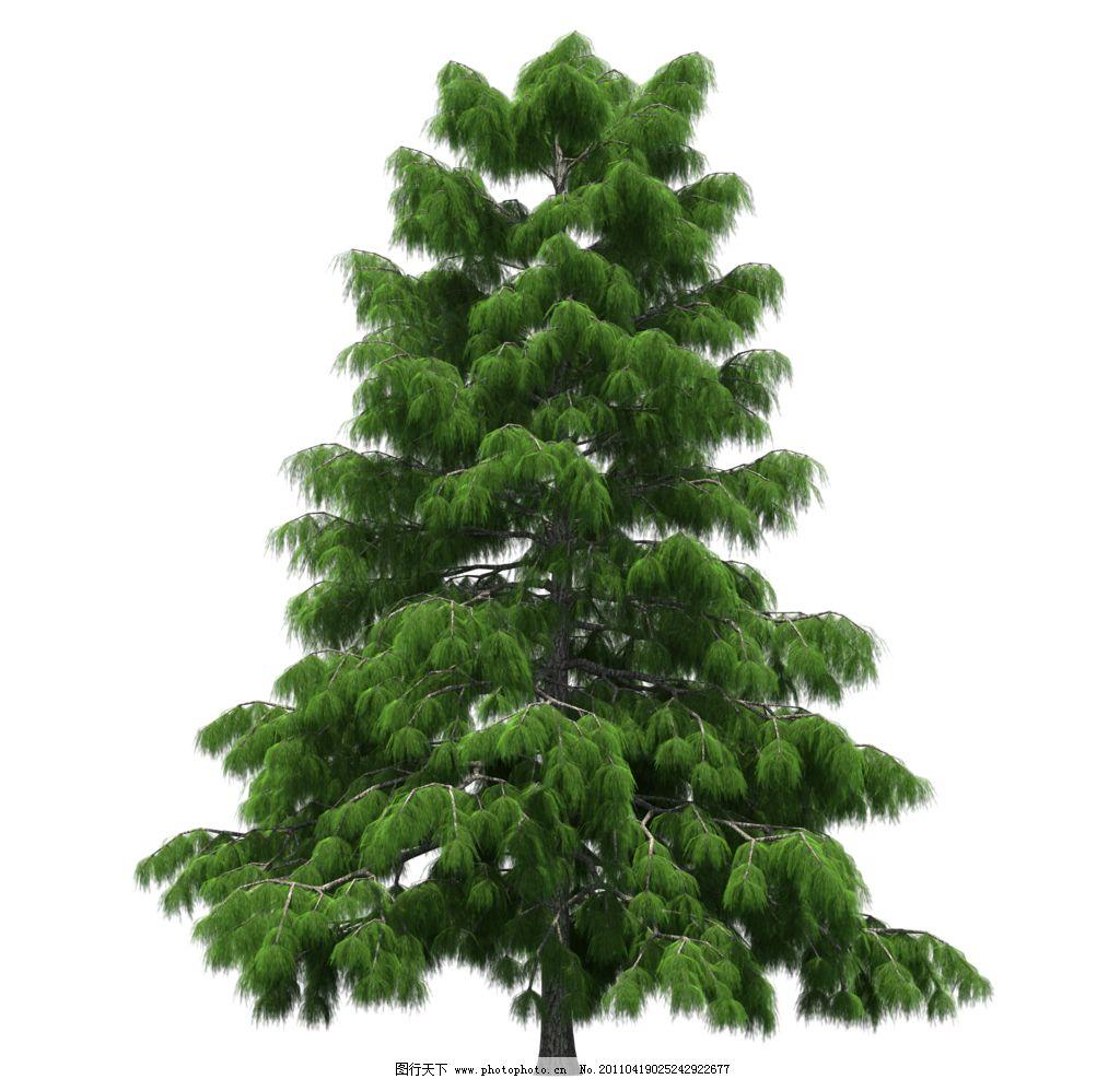 园林树木绿树透明png图片