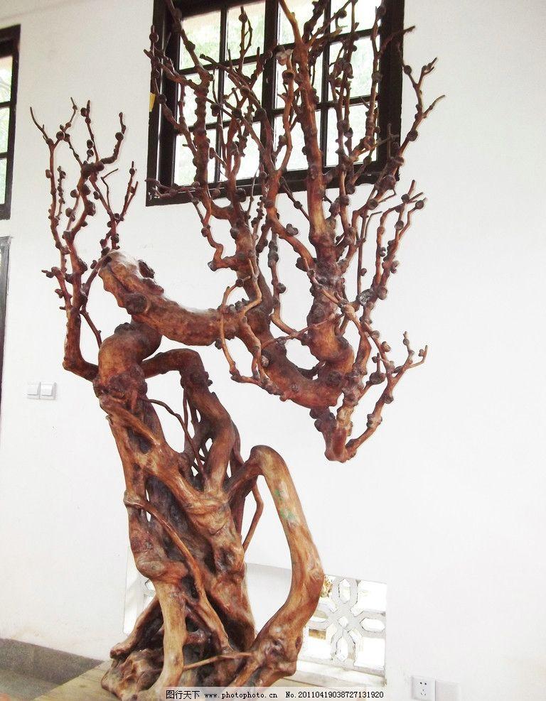 根雕 梅花树图片