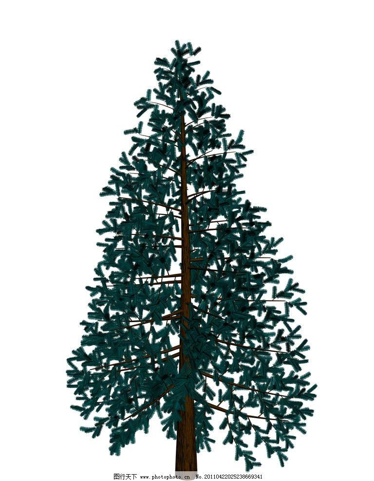 松针图片_树木树叶_生物世界_图行天下图库