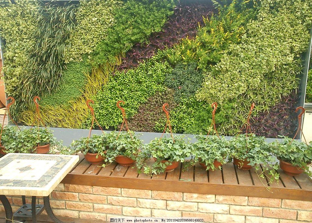 人造墙花园图片