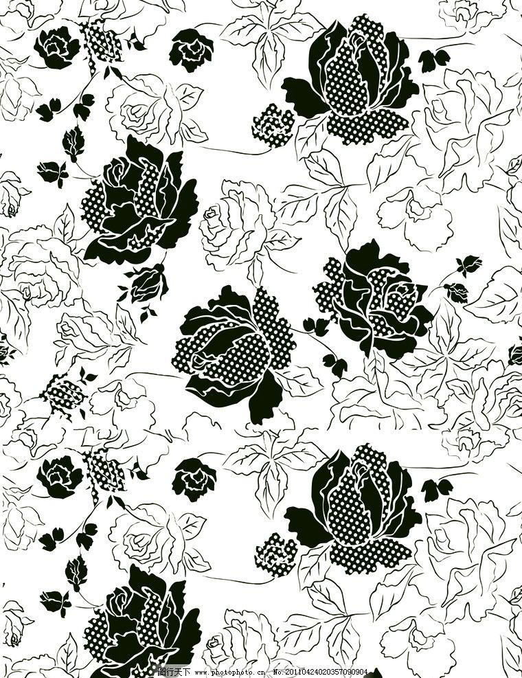 黑白玫瑰 玫瑰 线条 花边花纹