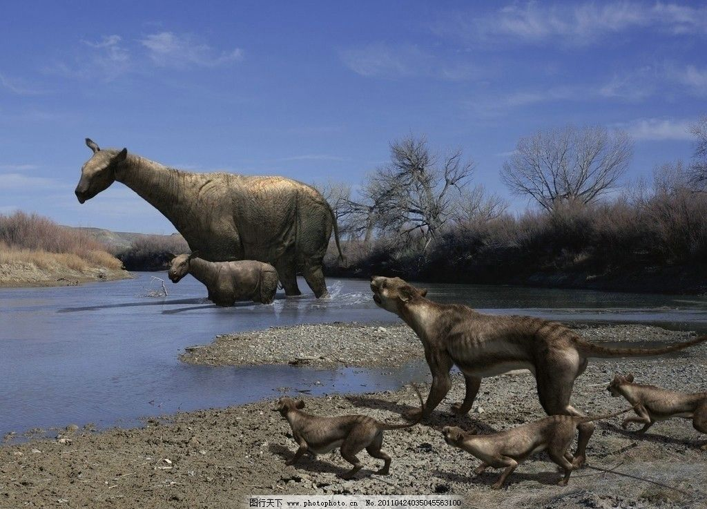 熊犬与巨犀 史前怪兽 3万年前 野生动物 生物世界 摄影 96dpi jpg