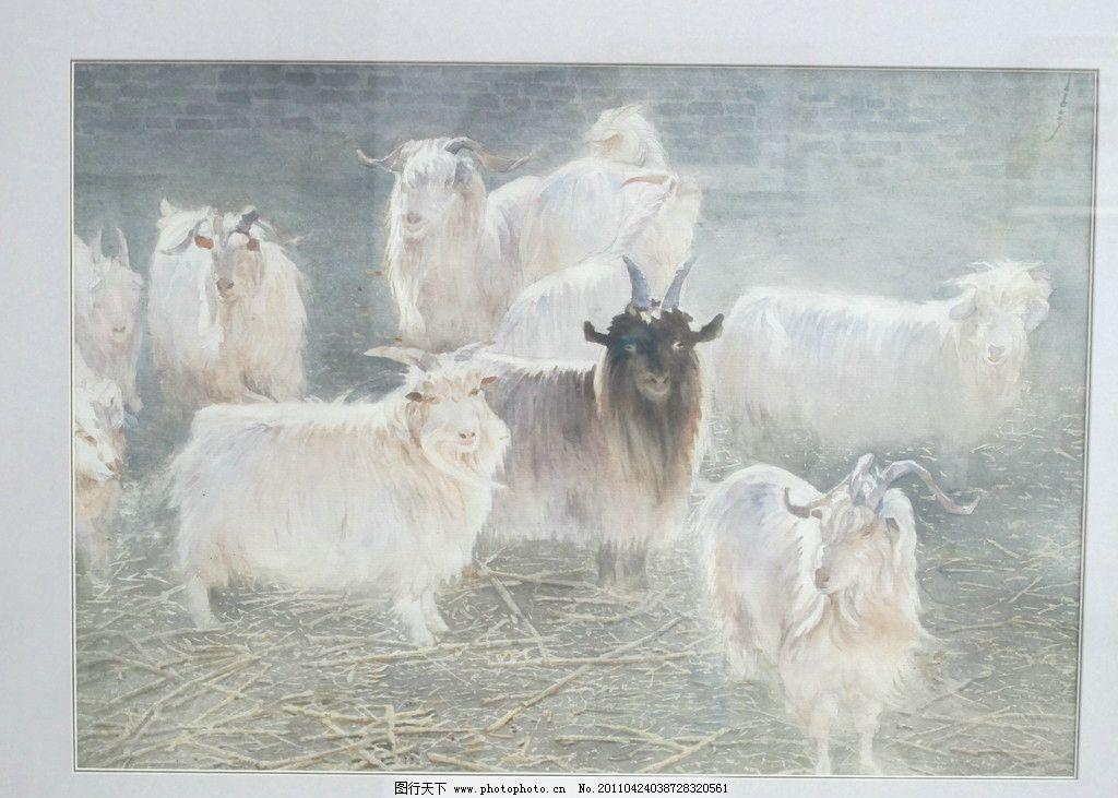 国画 国画羊 动物国画 写实油画 绘画 艺术 国画作品 国画创作 国画