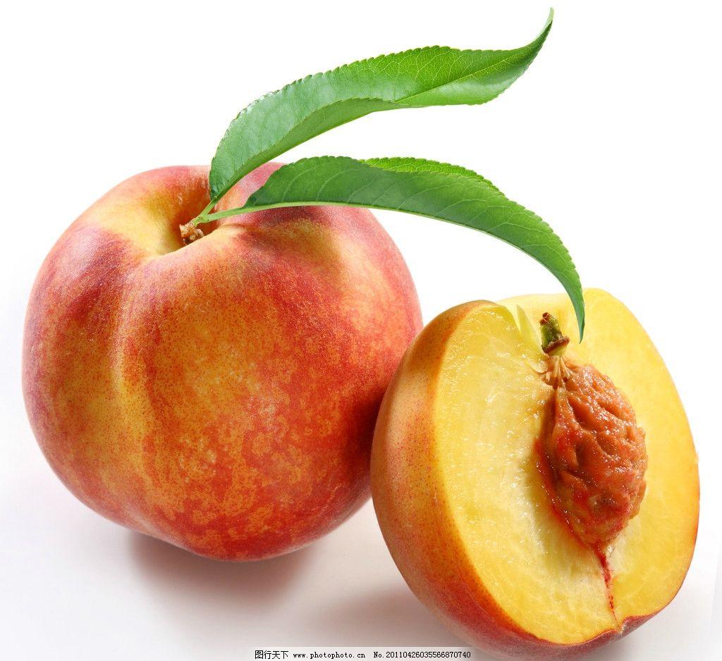 鲜桃子 水果 健康 营养 桃类主题 生物世界 摄影 300dpi jpg