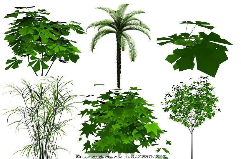 3d植物模型图片