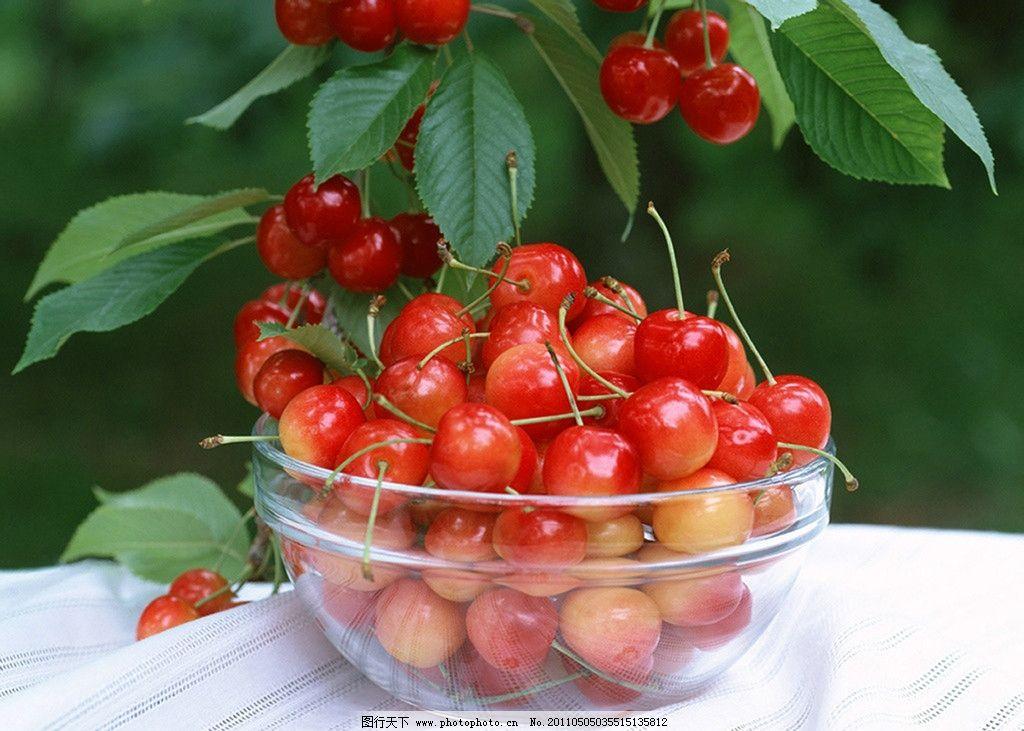樱桃 红色 摄影 绿叶 果盘 桌面背景 水果 生物世界 72dpi jpg