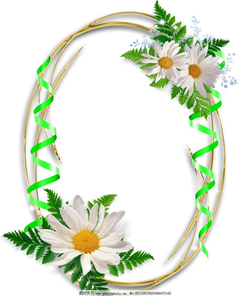 太阳菊相册边框图片