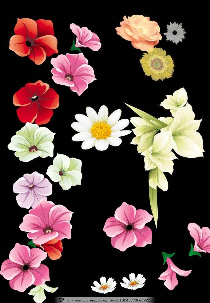 精美手绘花图片