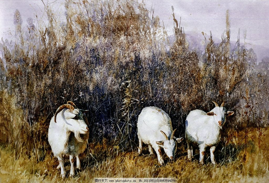 三羊开泰 水彩风景画 农村风景画 冬天雪地 棉羊吃草 油画风景 田野