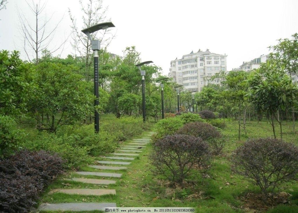 公园小道 石路 绿色的大自然 灯 风景 国内旅游 旅游摄影 摄影