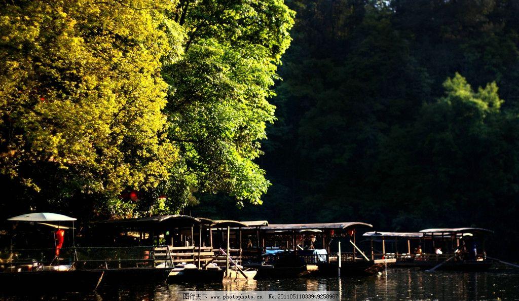 石象湖 船 树 光影 阳光 国内旅游 旅游摄影