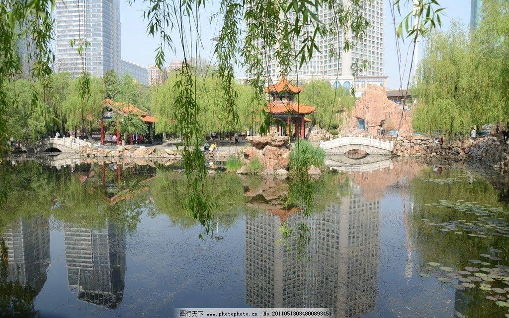 初夏的公园 水面 小桥 凉亭 柳树 自然风景 自然景观 摄影 300dpi jpg
