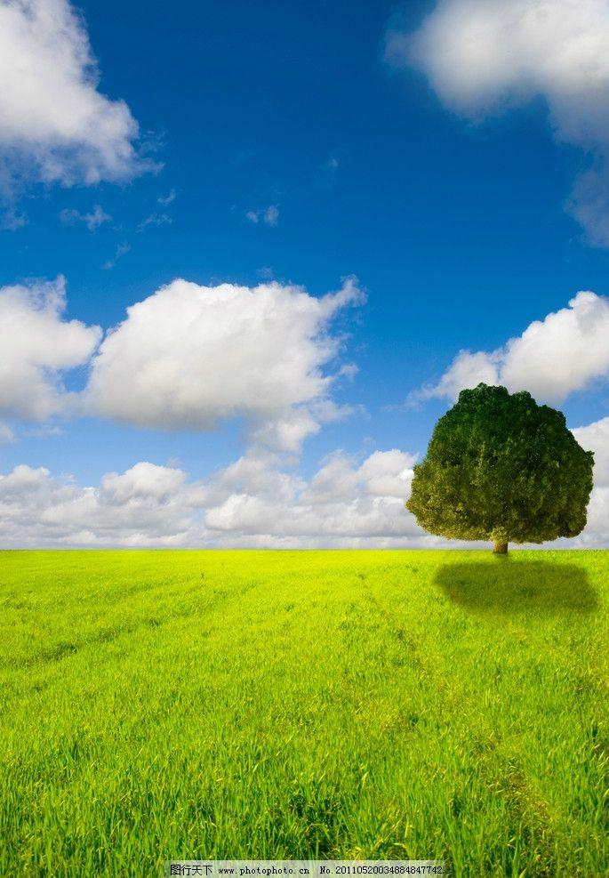 蓝天白云绿野大树图片
