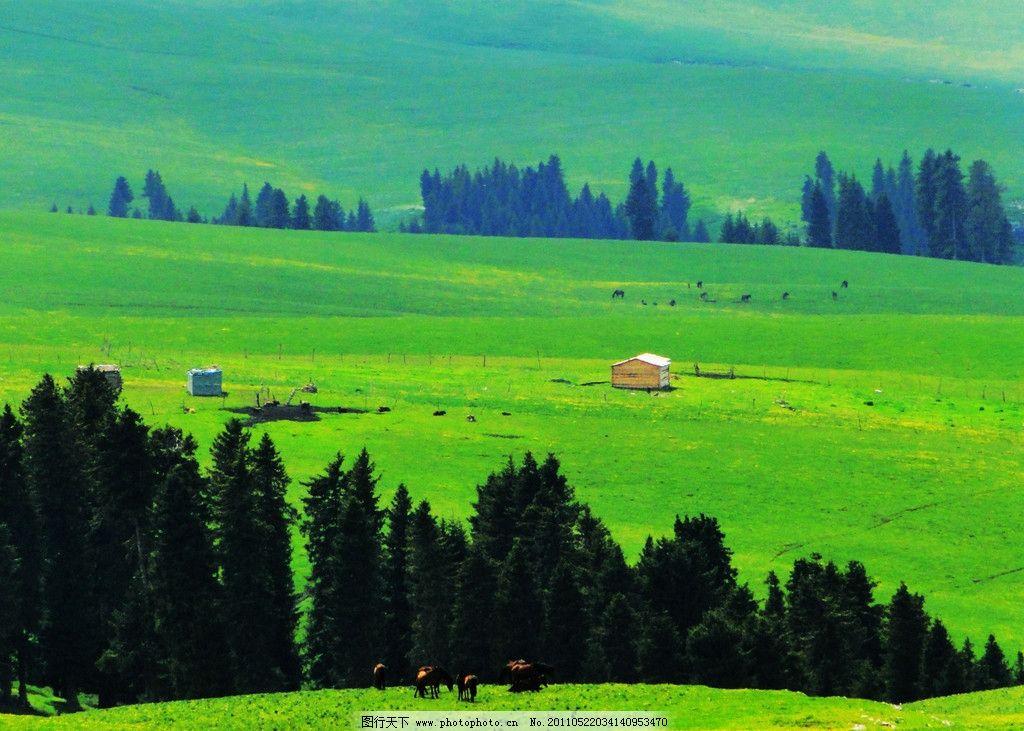 新疆风景图片,阿勒泰地区 山脉 树木 小村 房屋 草原