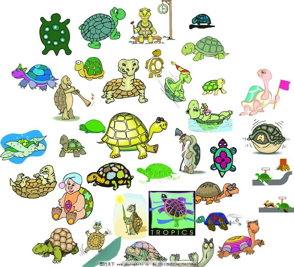 乌龟 海龟 乌龟壳 游泳 水 喇叭 爬行 龟仙人 动物 海洋生物