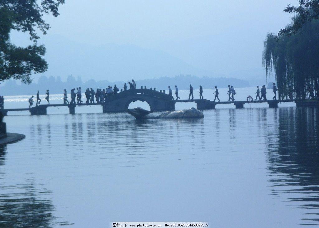 杭州动感西湖 杭州 西湖 小拱桥 游人 水牛 山水风景 自然景观 摄影