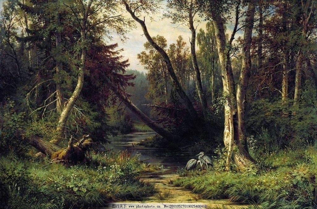 森林景观与鹭 希施金油画 俄罗斯风景油画 巡回展画派 松树林 鹭 森林