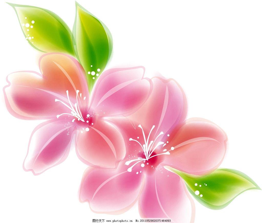 彩色百合 花卉 花边花纹 底纹边框 设计 300dpi jpg