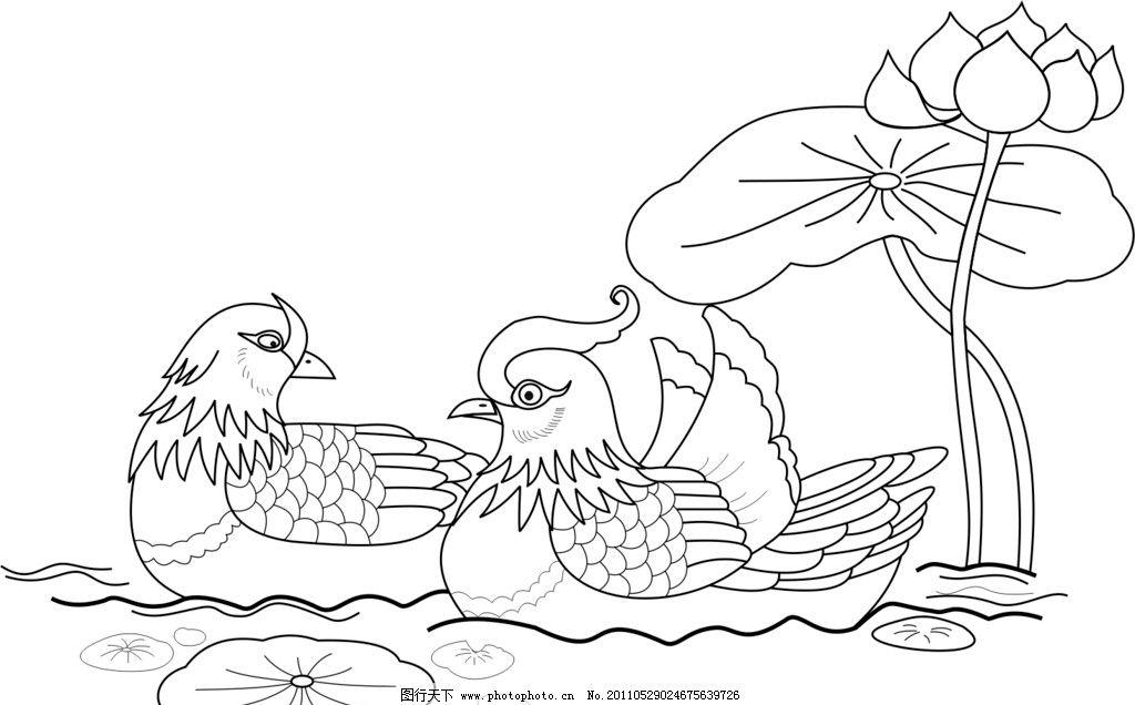 鸳鸯戏水 设计 荷叶 荷花 水纹 鸳鸯 鸟类 构图 勾线 cdr文件 原创