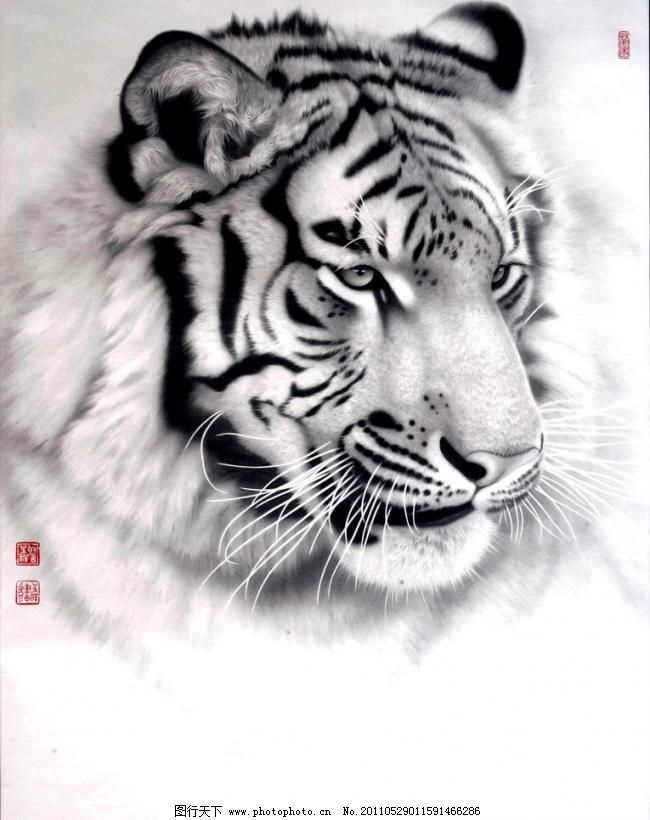 绘画 绘画书法 老虎 美术 兽王 美术 绘画 中国画 水墨画 彩墨画 动物