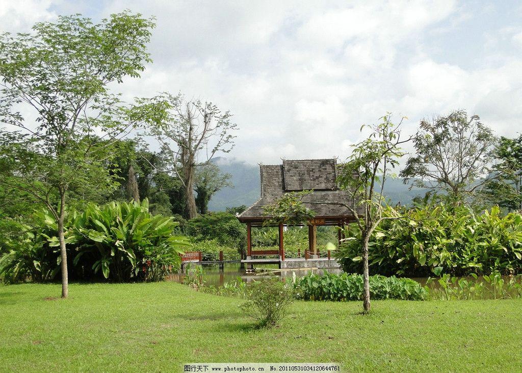 西双版纳 茅草屋 热带雨林 风景 西黄版纳建筑 少数民族建筑 摄影专辑