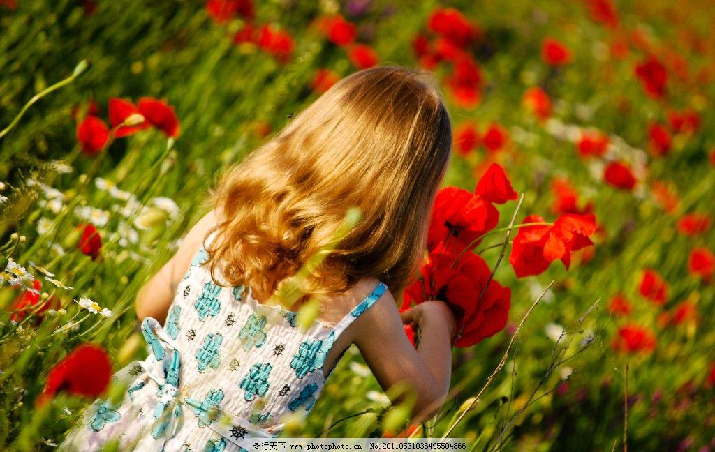 花朵中的女孩 女孩 花朵 花丛中的女孩 天使女孩 儿童幼儿 人物图库