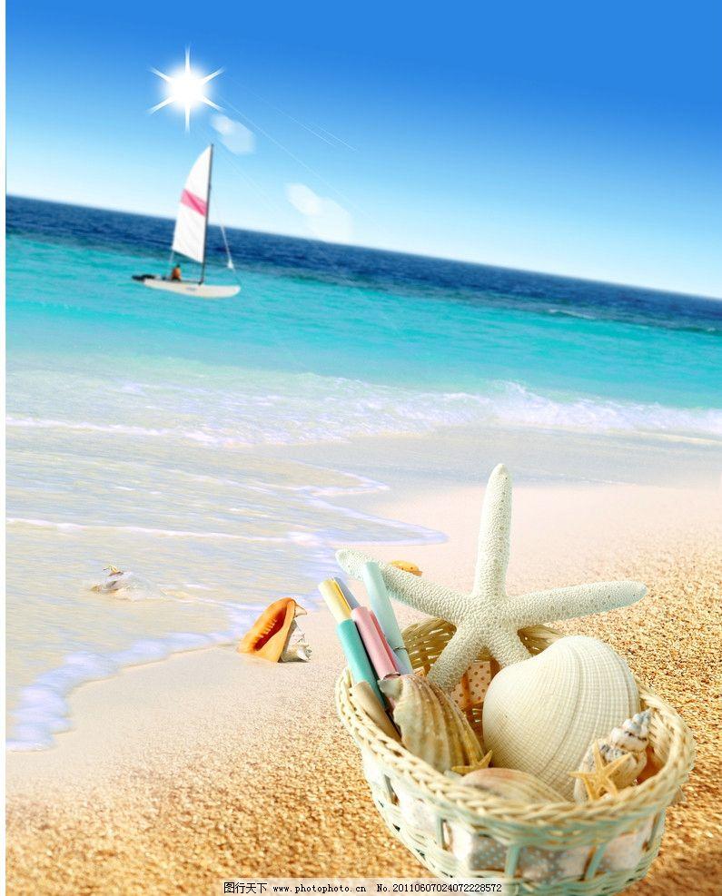 七寸沙滩海星壁纸