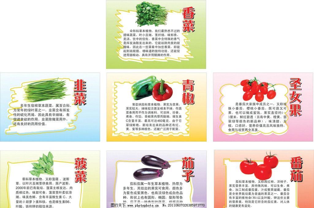 青椒 圣女果 小番茄 菠菜 茄子 番茄 异形 异型 各种蔬菜 吃的 营养