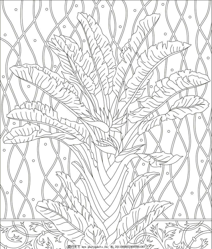 手绘各种芭蕉树的画法