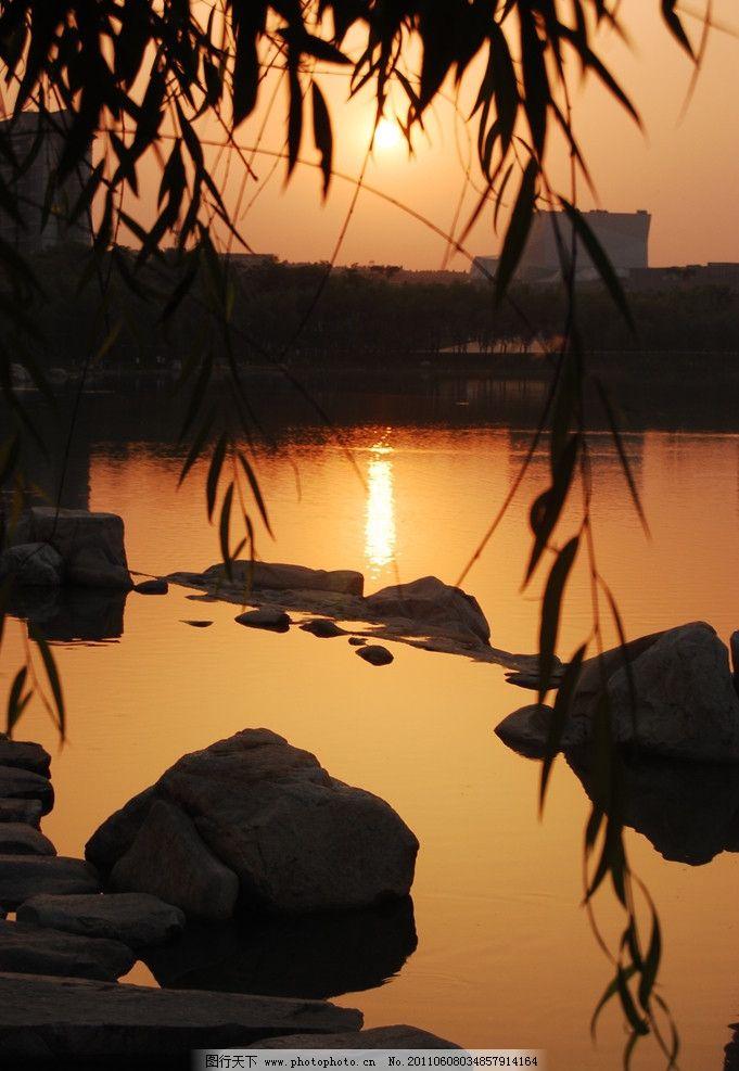 夕阳西下 落日余晖 太阳下山 湖水 池塘 倒影 柳絮 傍晚 朦胧 自然