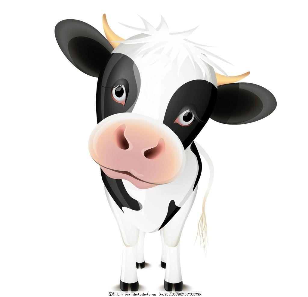 可爱奶牛 可爱小动物 卡通动物 可爱 动物图标 牛 奶牛 小牛 动物主题