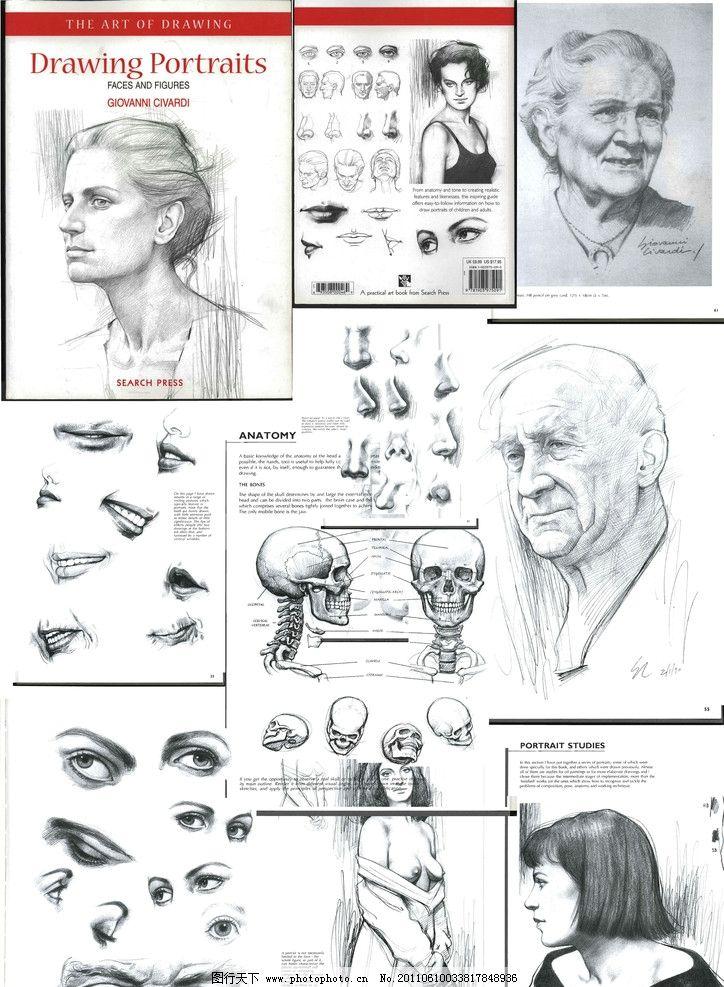 脸部 头 五官 绘画 头像练习 头部素描 头部结构 绘画资料 眼