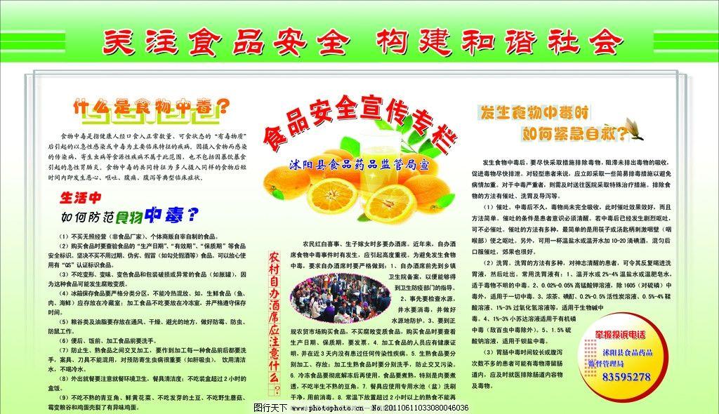 食品药品安全宣传栏 食品安全宣传标语 水果 线条 展板模板 橙子
