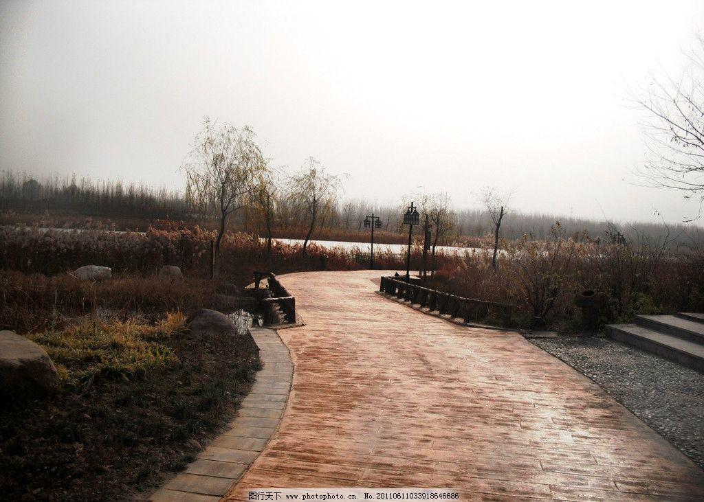 蜿蜒小路 咸河风景区 德州风景 中国太阳谷 德州开发区 小路 我的摄影