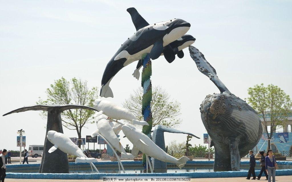 广场雕塑 雕塑 青岛 极地海洋世界 海豚 鲸鱼 水池 喷泉 专业特色
