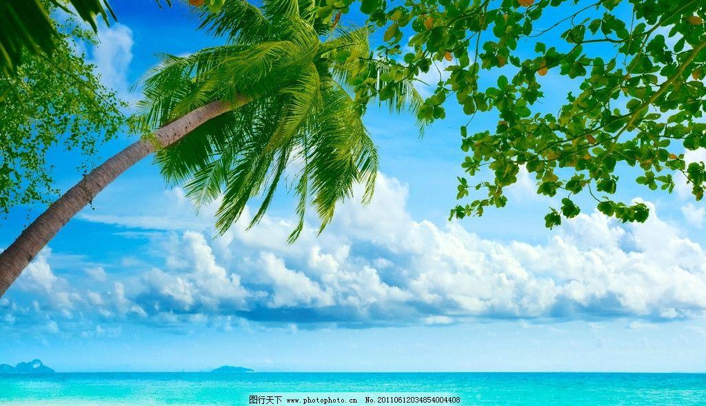 热带海滩度假村 热带 海滩 度假村 椰子树 蓝天 白云 海水 桌面 壁纸