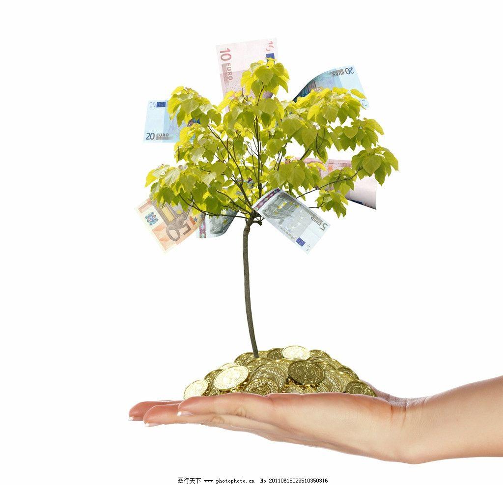 手中的发财树 手势 钞票