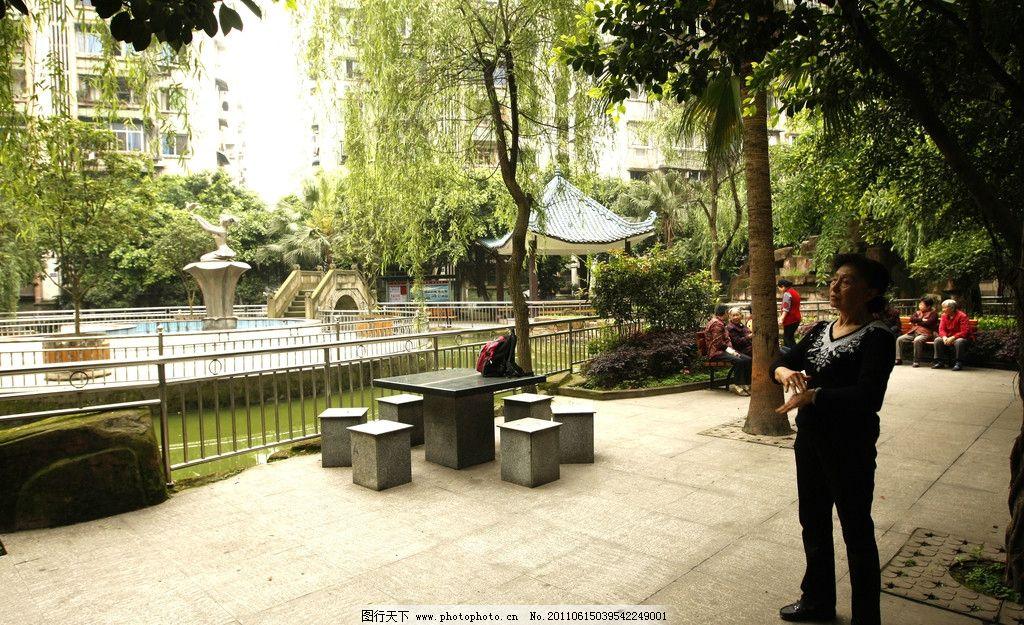 重庆小区 水池 石凳 绿化 树木 和谐 小区 大楼 绿树 石油小区 园林