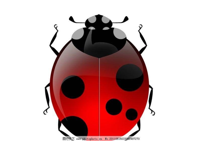 甲虫简笔画步骤