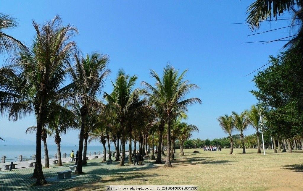 蓝色的海滨 蓝色 海滨 椰树 蓝天 海洋 海湾 沙滩 国内旅游 旅游摄影
