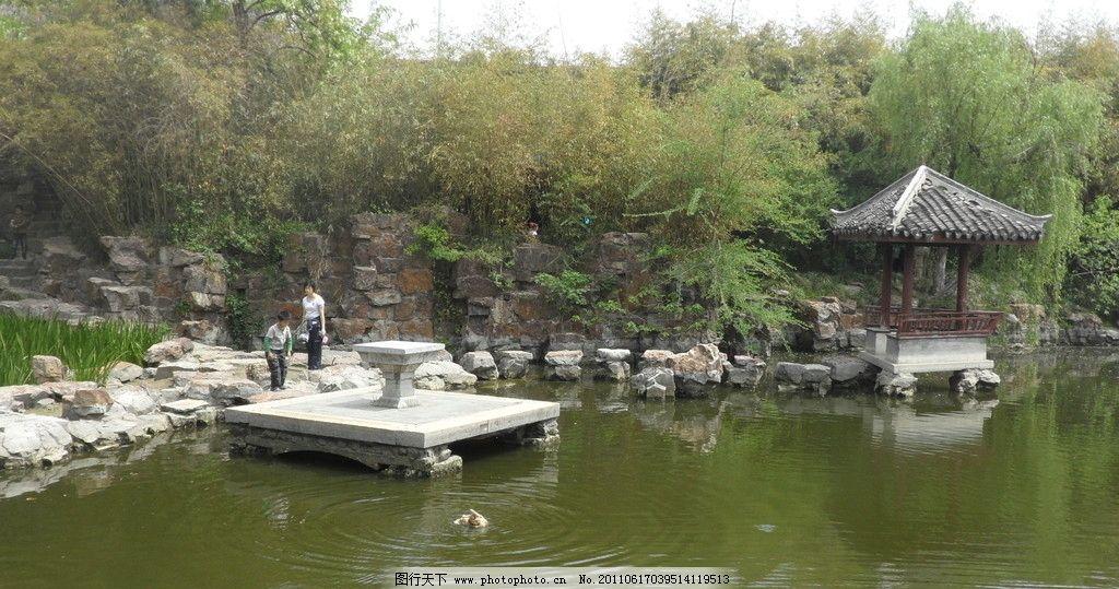 园林景观 亭子 湖水 假山 竹林 园林建筑 建筑园林 摄影 96dpi jpg