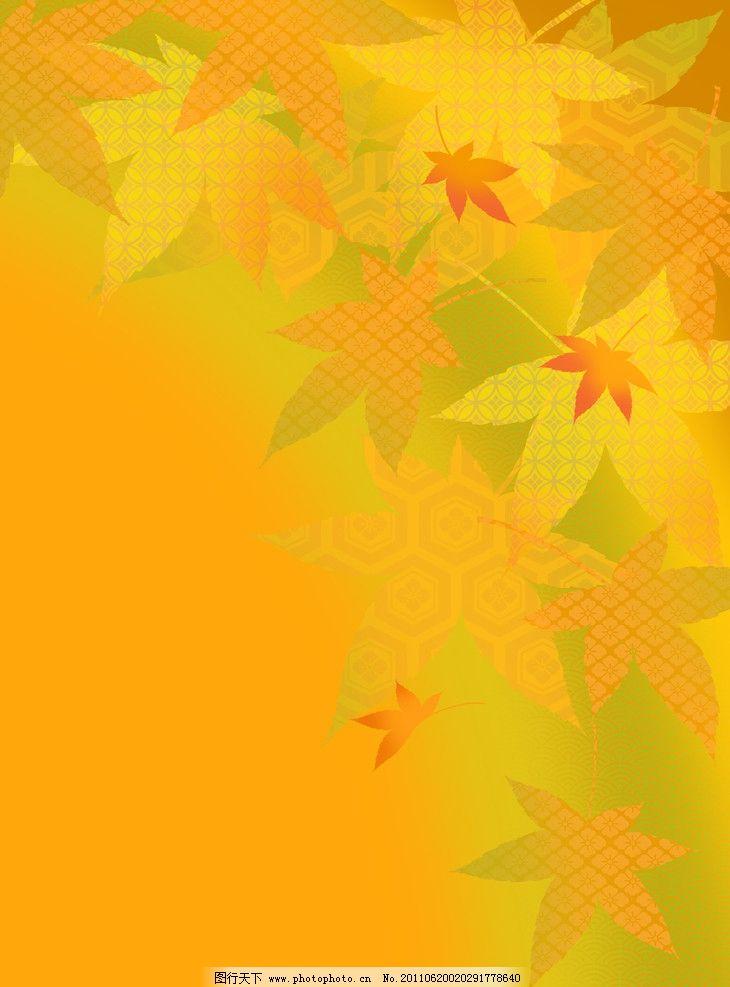 枫叶 叶子图片