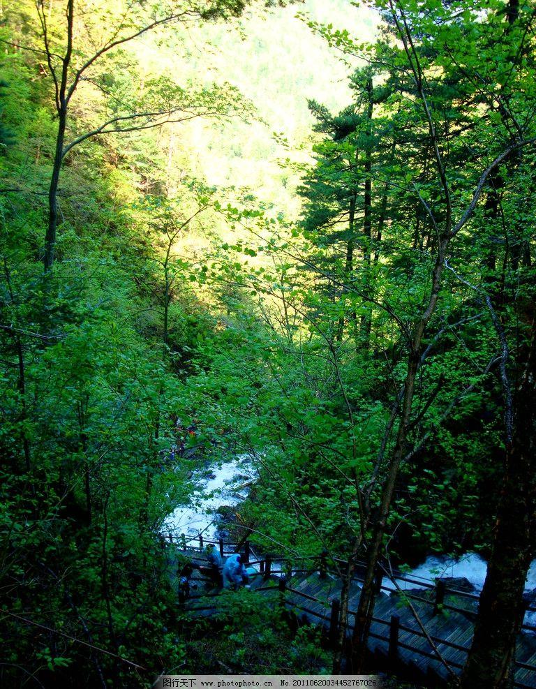 五常凤凰山 大峡谷 山涧图片_山水风景_自然景观_图行