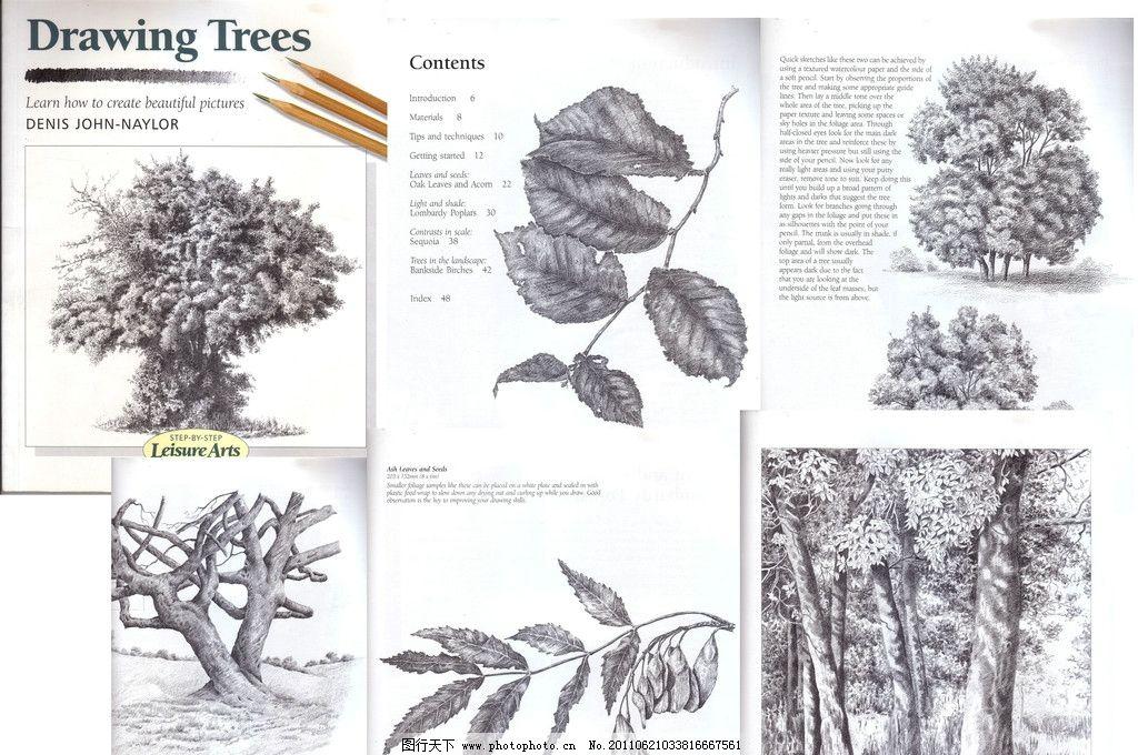 树的画法 植物 景观 树叶 素描 绘画 绘画资料 其他 源文件